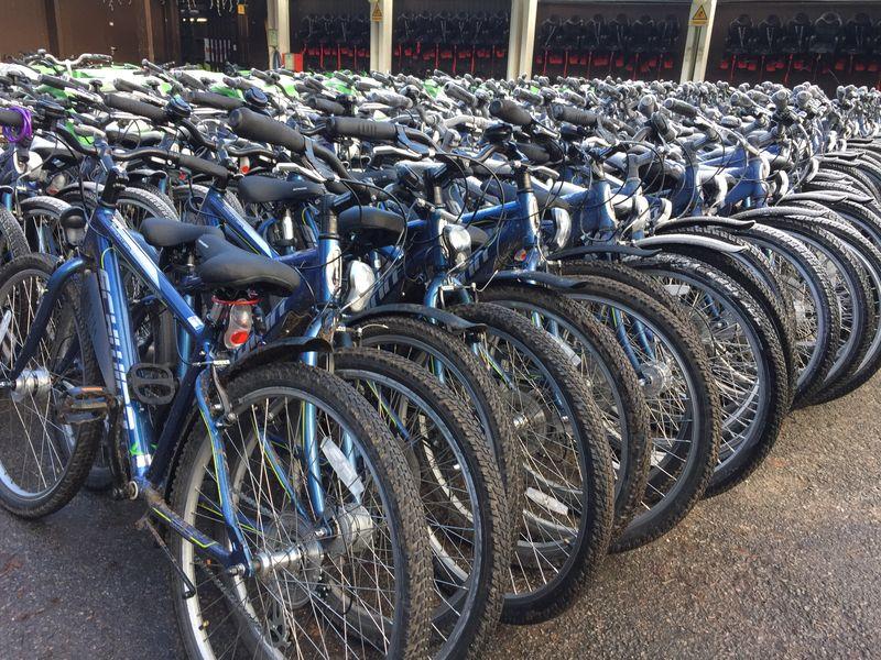 Center Parcs bikes ready for hire